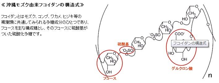 沖縄モズク由来フコイダンの構造式